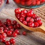 5 Heerlijke Cranberry Smoothie Recepten + de 4 Gezondheidsvoordelen