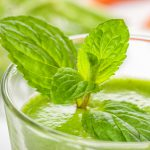 Recepten voor Groene Smoothies | Lekkere Extra Voedingsstoffen
