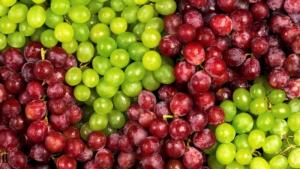 druivensap-uitgelicht