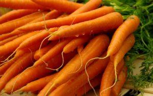 wortel1